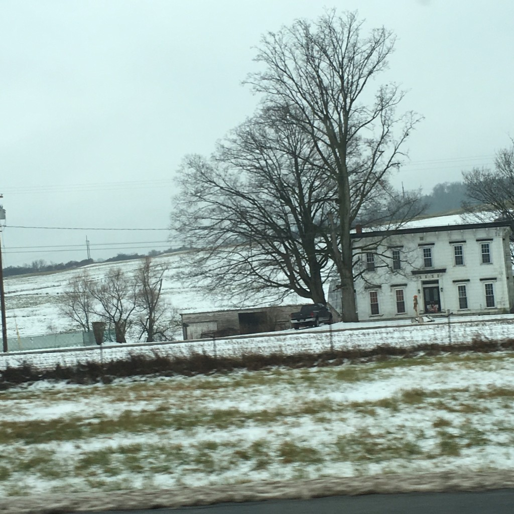 Albany NY, Snow And Rented Houses.